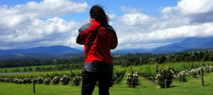 yarra-valley-wine-tours-022