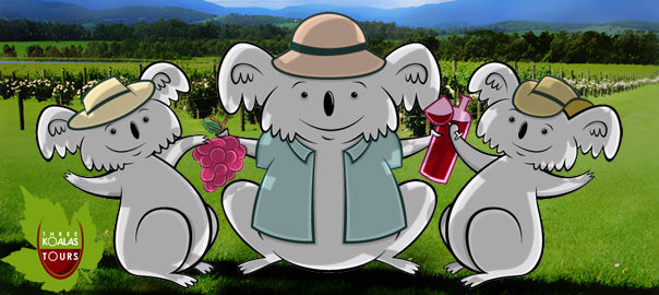 three-koalas-yarra-valley-logo
